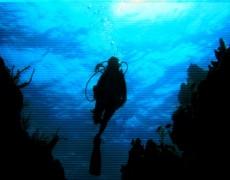 SoftLord[DJ] – Aqua